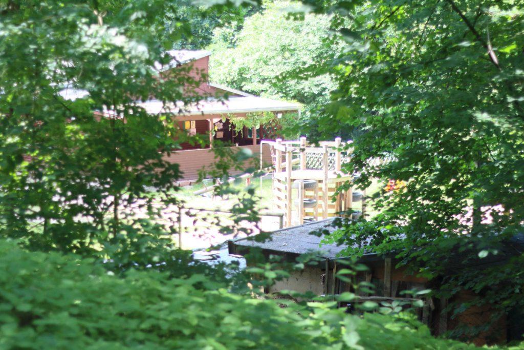 Fast wie im Dschungel: Der Aktivspielplatz Schwarzer Berg ist rundherum von dichtem Grün umgeben. Foto: Jan Engelken