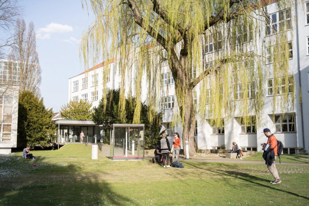 Der Weidenhof der HBK Braunschweig. Foto: Frank Sperling